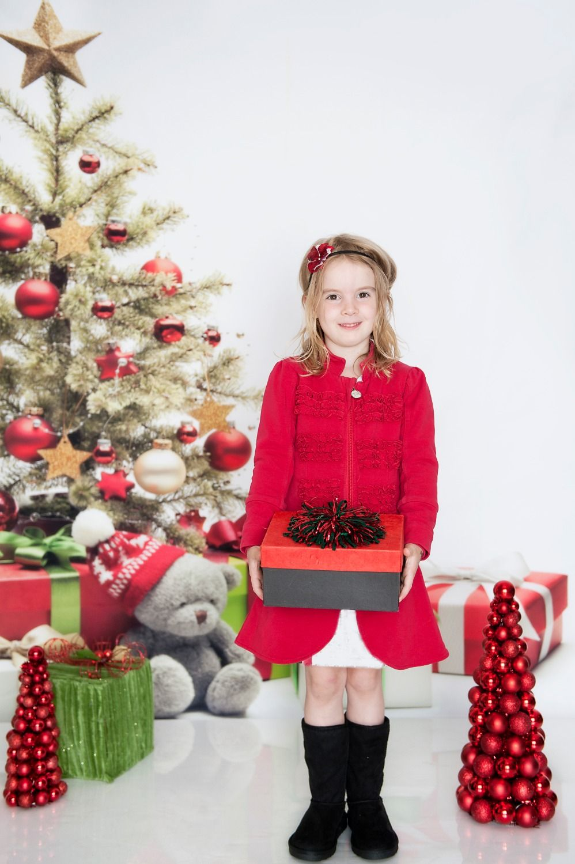 Portrait cloth Bear Christmas Gift Photography Background | backdrop ...