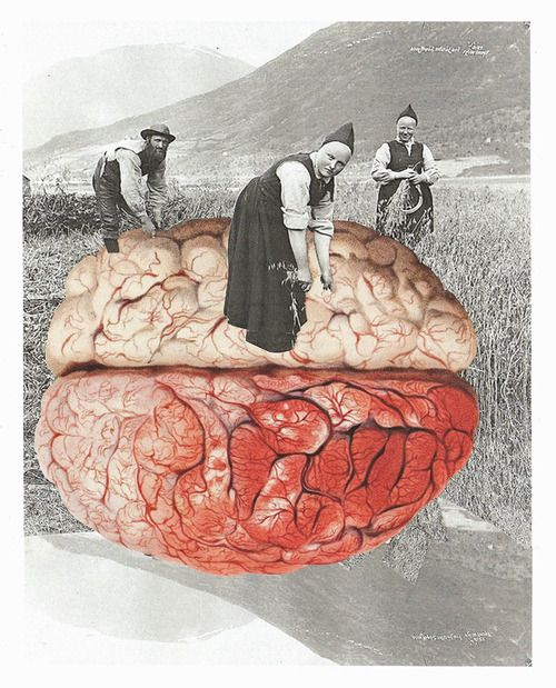 Lynn Skordal - Norwegian Brain Farmers, 2012                      Collage    Traditional Cut + Paste Paper Collage