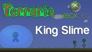 Thumbnail Xbox Terrarium Stampylongnose