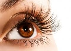 http://www.fashionstudentsonline.com/idol-lash-can-be-the-best-for-your-eyelashes/ Idol Lash can be the best for your eyelashes