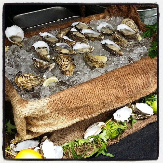 Freshly Shucked Oysters From Thee Shucker | Seafood | Unprocessed | The Grizzly Bear Perth