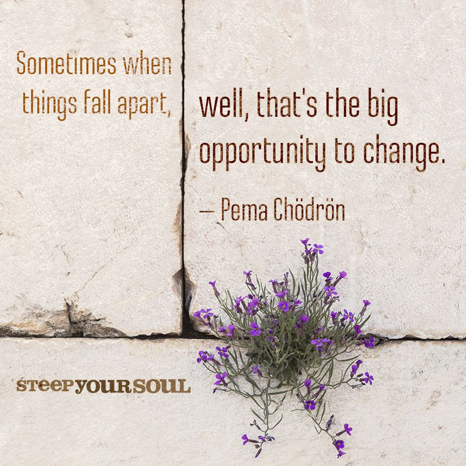Quotes About A Relationship Falling Apart: Pema Chodron Quote On Life's Challenges