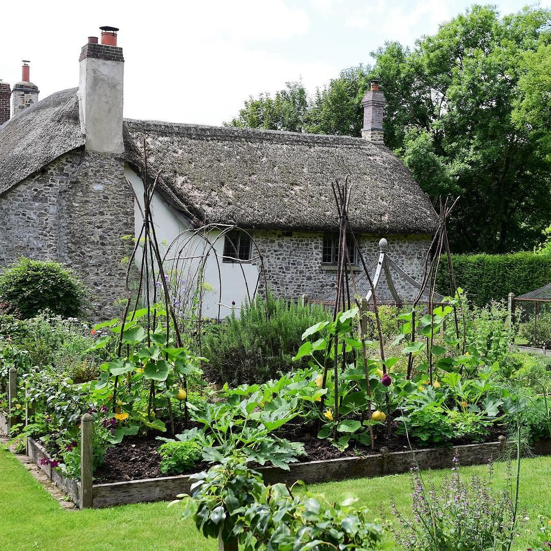Yesterday I Went To South Wood Farm In Devon Thank You So Much Headgardener Will Solegardener For The Invitatio Backyard Farming Farm Gardens Vegtable Garden