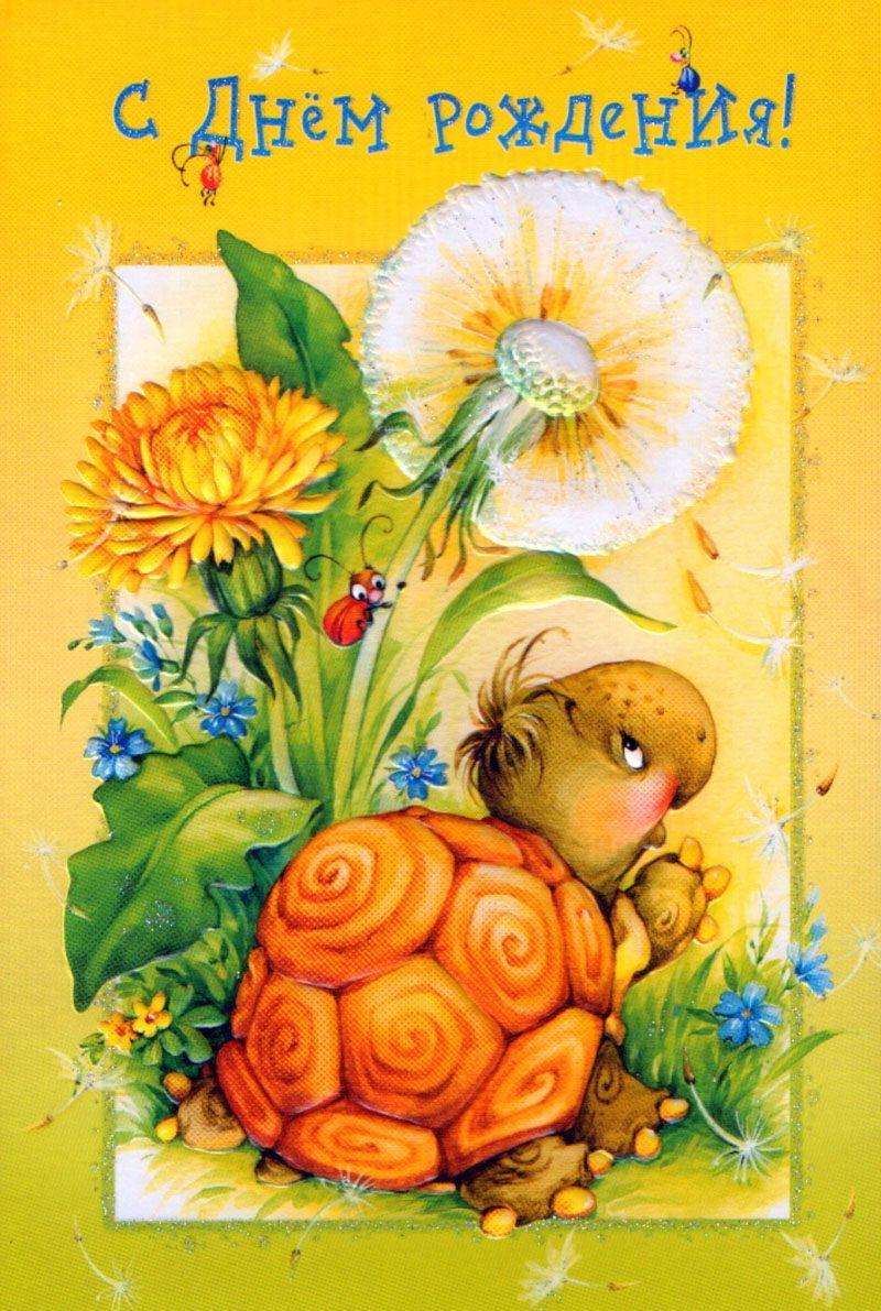Открытки, черепаха открытка