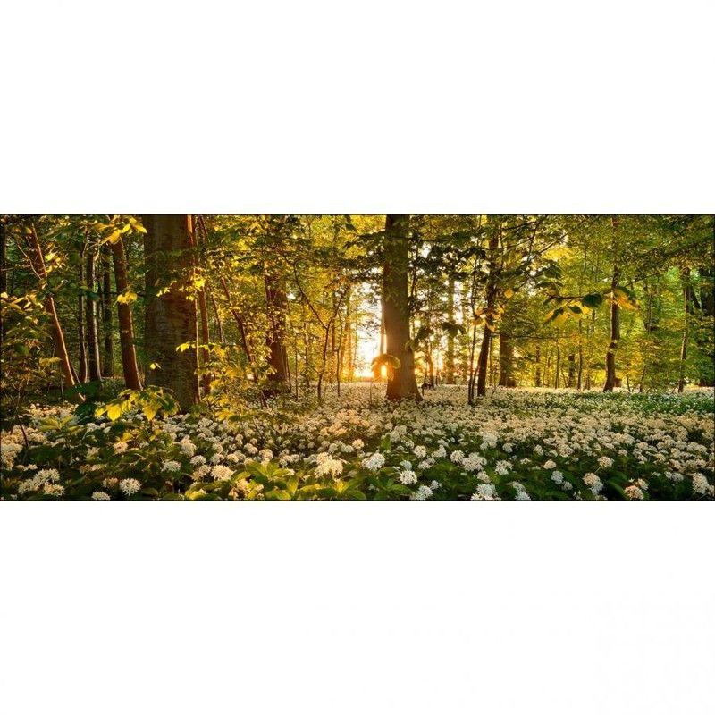 Natur hinter Glas. Glasbild Leiner (50x125cm