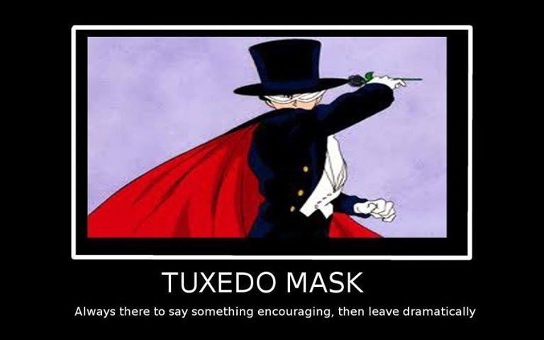 sailor moon and tuxedo mask relationship memes