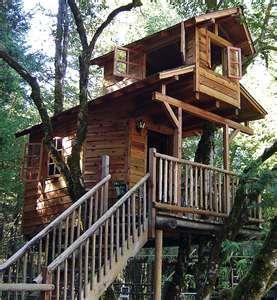 Two Story Treehouse Tree House Treehouse Tree House
