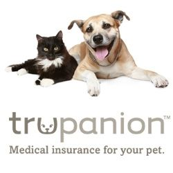Trupanion Pet Insurance Covers 90 Of Veterinary Costs Including Hospital Stays Diagnostic Tests Medicati Pet Insurance Dog Insurance Pet Insurance For Dogs