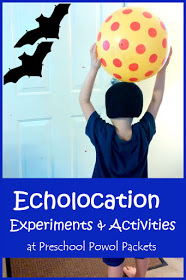 Bat Science Experiments: Echolocation Activities! #scienceexperimentsforpreschoolers