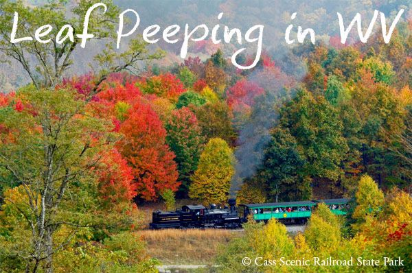 Do you love the changing of the seasons and watching the gorgeous display of color in the Fall?  You should check out the Fall Foliage Train Tour in Cass West Virginia