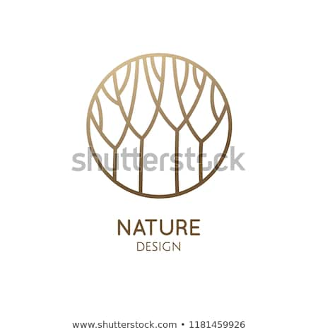 Forest Logo Template In Linear Style Abstract Outline Round Icon Of Trees Garden Vector Emblem For Business Design Bad Forest Logo Tree Icon Logo Templates