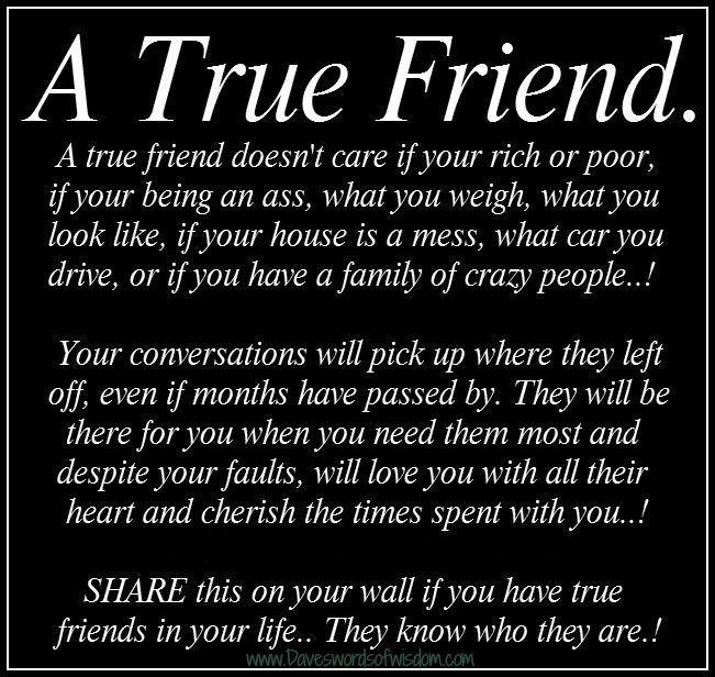 A true friend.... friends teddy bear friend quote true ...