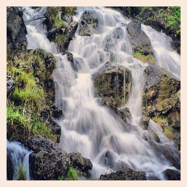El agua fluye constante en los verdes paisajes de la sierra albaceteña