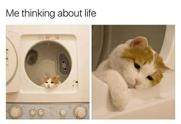 Me thinking about life