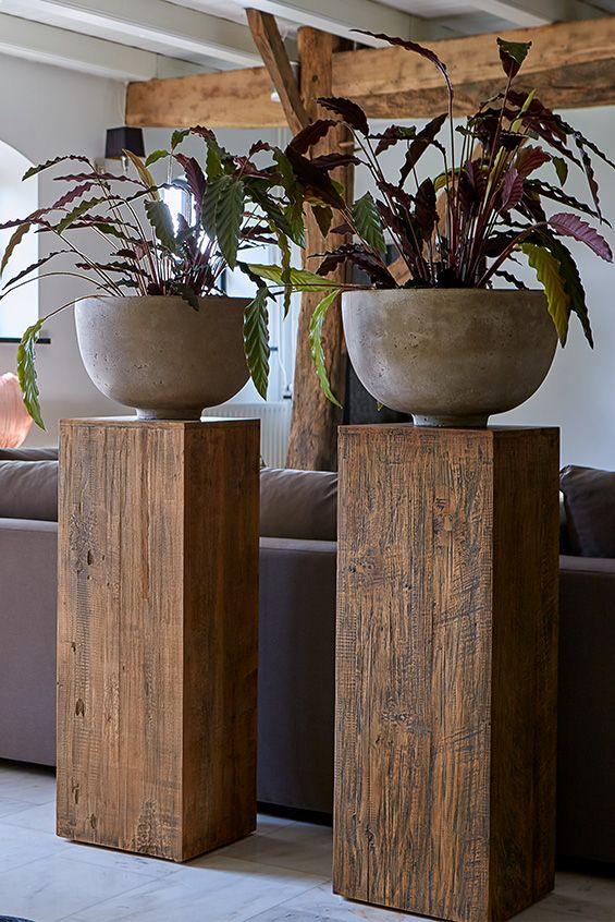 Planten Roomdivider In Je Woonkamer Huis Ideeen Decoratie Goedkope Huisinrichting Home Deco