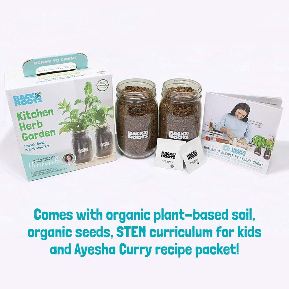 Organic Indoor Herb Garden Kit By Back To The Roots Non Gmo Basil And Mint Plants Starter Kit With Organic Seeds In 2020 Herb Garden Kit Mint Plants Organic Seeds
