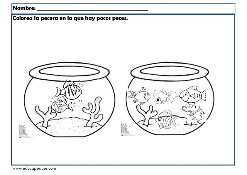 Fichas Infantil Para Trabajar Conceptos Basicos Fichas Concepto