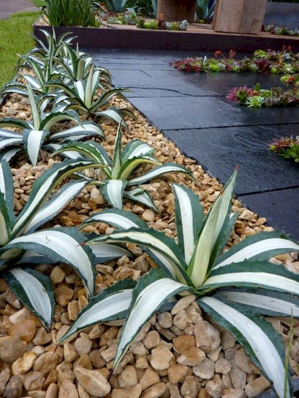 70 Beautiful Low Maintenance Front Yard Garden and Landscaping Ideas #frontyardlandscapedesign