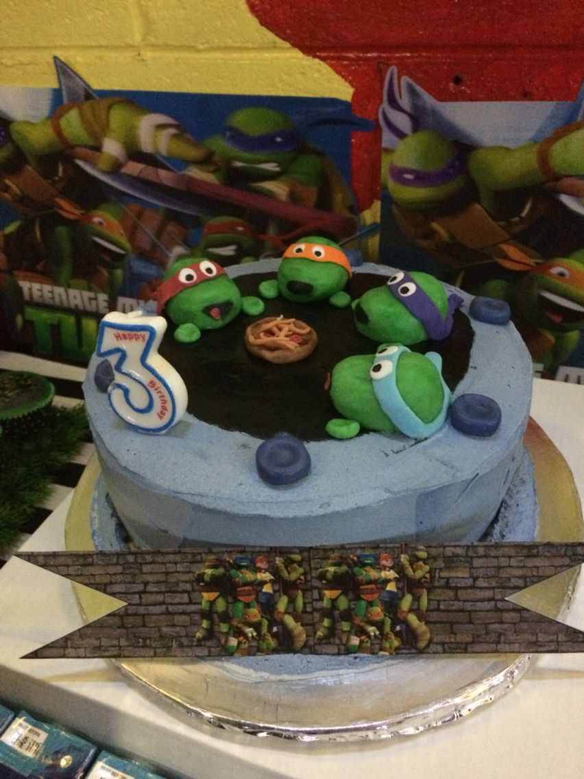 Birthday Cake Ashrafs Teenage Mutant Ninja Turtle Third Birthday