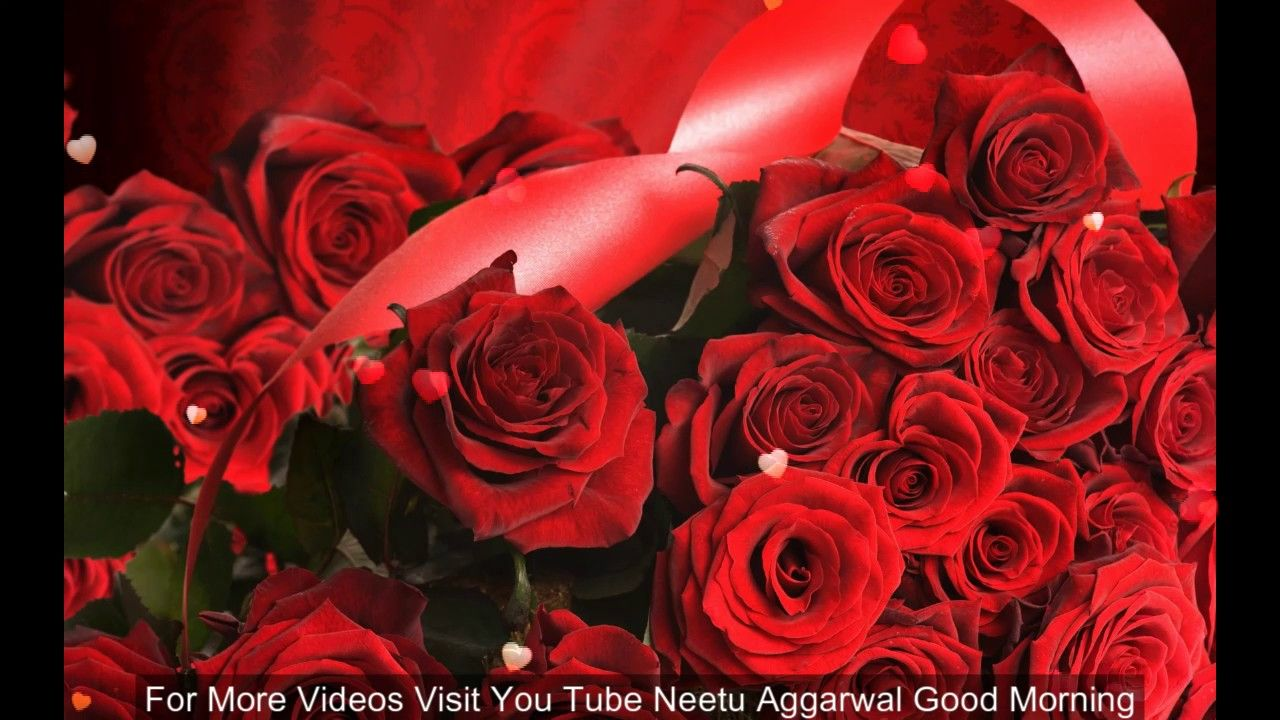 Good Morning Wishes With Beautiful Red Rosesmorning Flowers For You