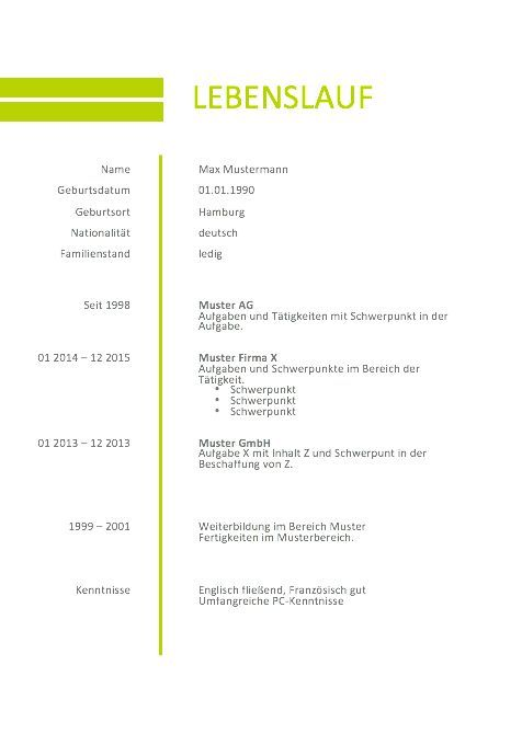 Ausgezeichnet Lebenslauf Vorlage Ideen Ideen - Dokumentationsvorlage ...