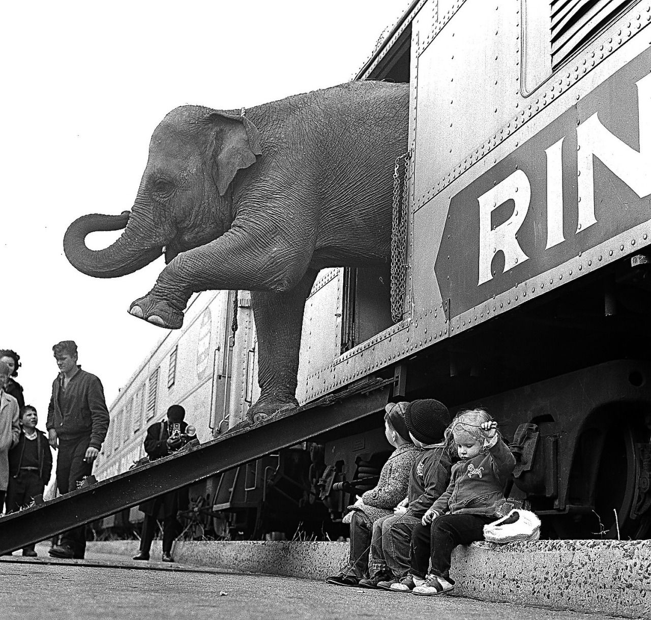 A Ringling Brothers Circus elephant walks out of a train car as young children watch in the Bronx railroad yard in New York City (April 1, 1963).