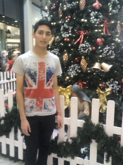 Yo con el árbol de navidad en el shopping de San Justo.