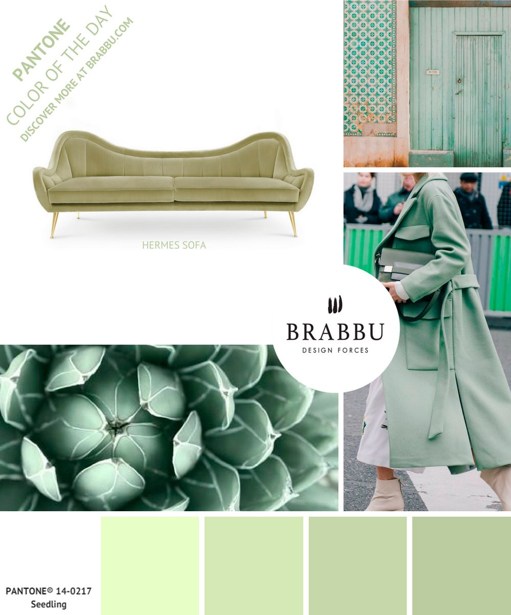 @pantonecolor Color of the Day: Seedling   Mood Boards. Color Trends. #colors #pantone #moodboard #interiordesign Discover more at: https://www.brabbu.com/moodboards/