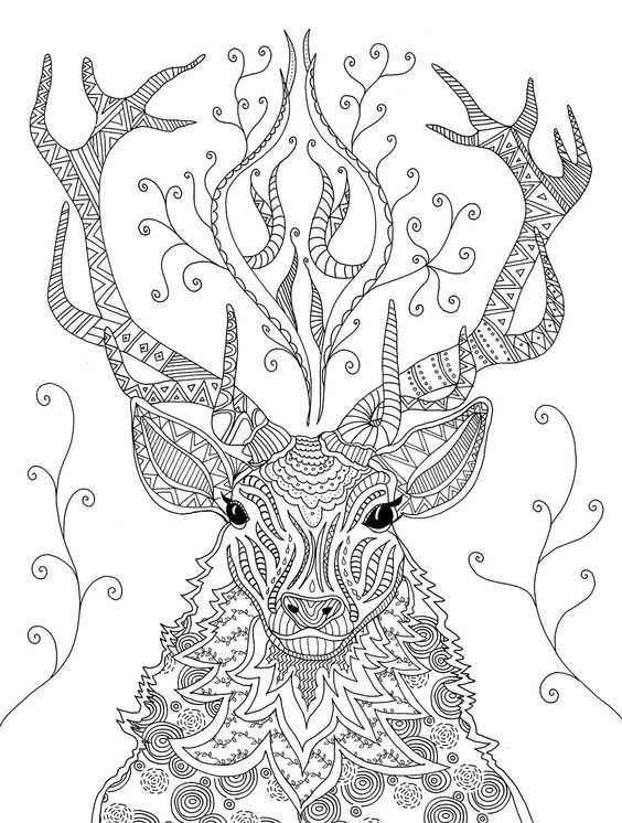 Reindeer coloring page Christmas