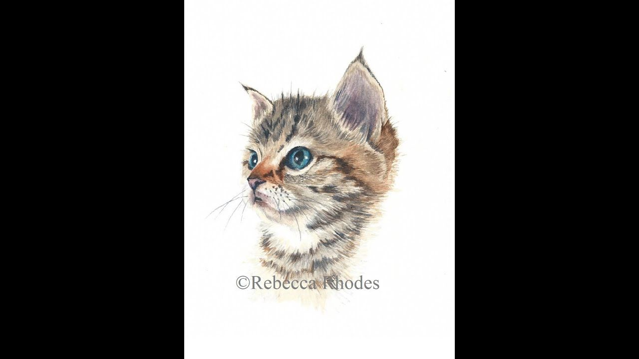 Watercolor Painting Tutorial Kitten Water Color In 2019