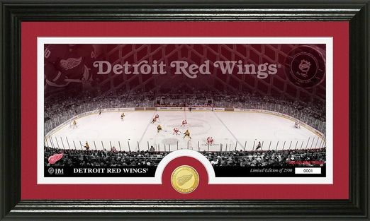 Detroit Red Wings Home Ice and Minted Coin Framed Picture