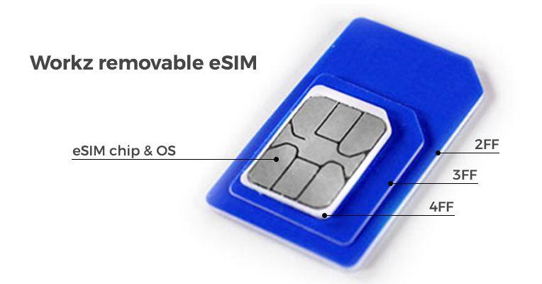 eSIM manufacturer and remote SIM provisioning manager