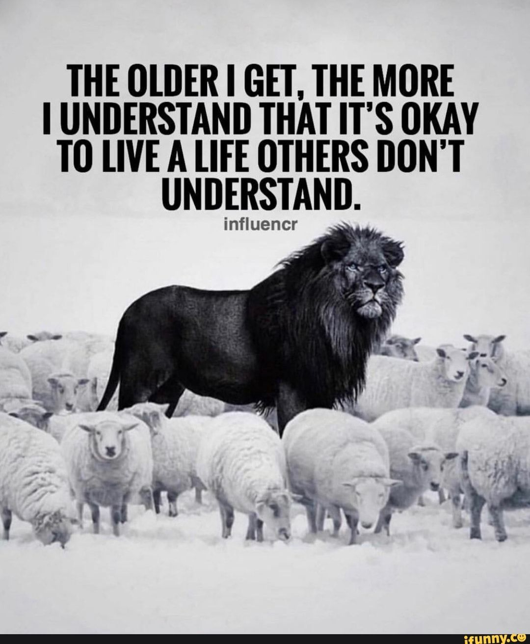 THE OLDER I GET. THE MORE I UNDERSTAND THAT IT'S OKAY TO [M A [IFE OTHERS DON'T UNDERSTAND. influencr - )