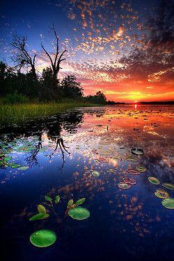 Lily Pad Sunset, Oklahoma  photo via carol