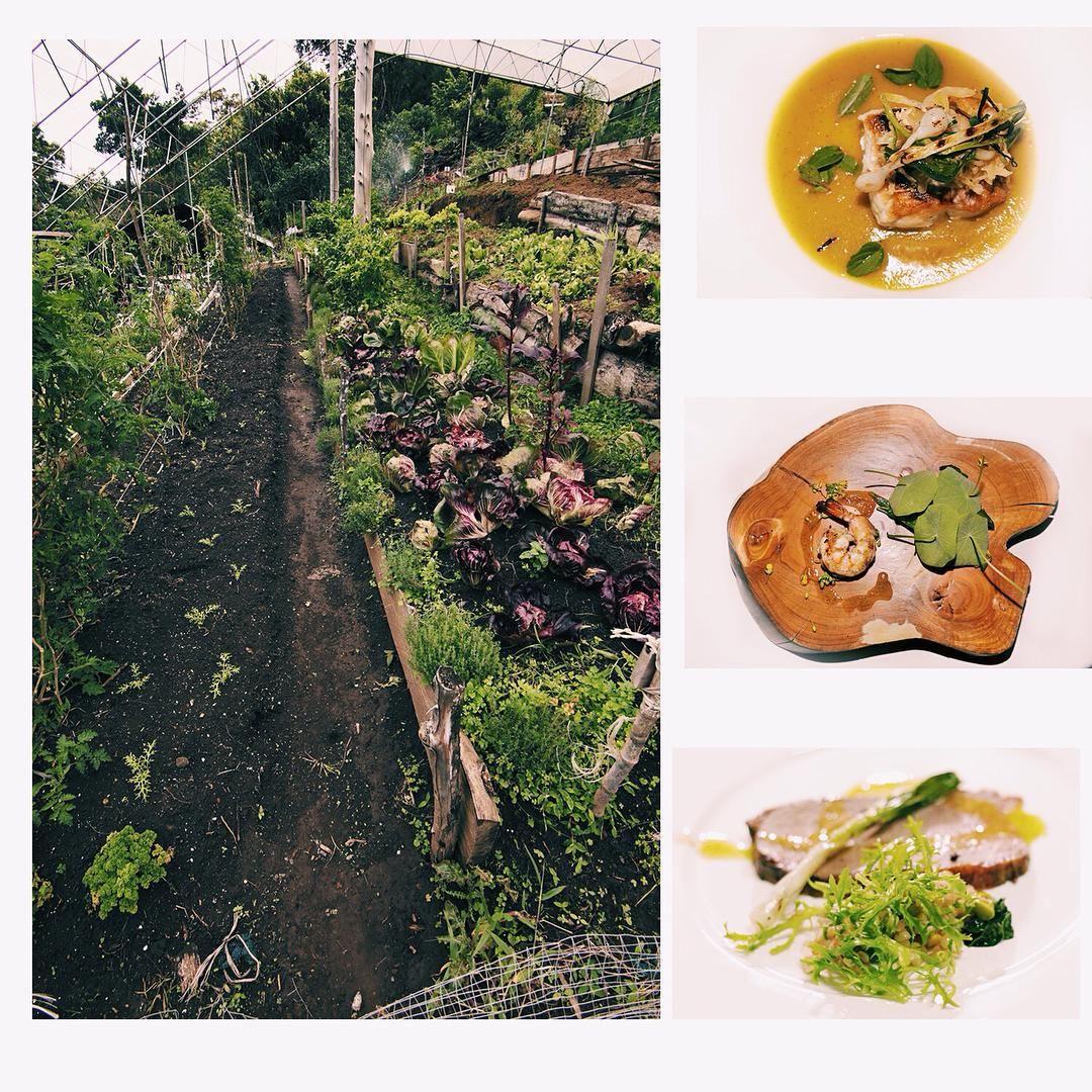 De nuestra huerta a la mesa! Platos que disfrutamos el sábado en nuestra cena con @almercat #restaurantecelajes #organicfood #farmtotable