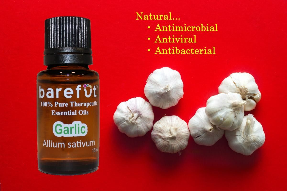 100% Garic oil now available!   Order here: https://barefut.com/?a=420