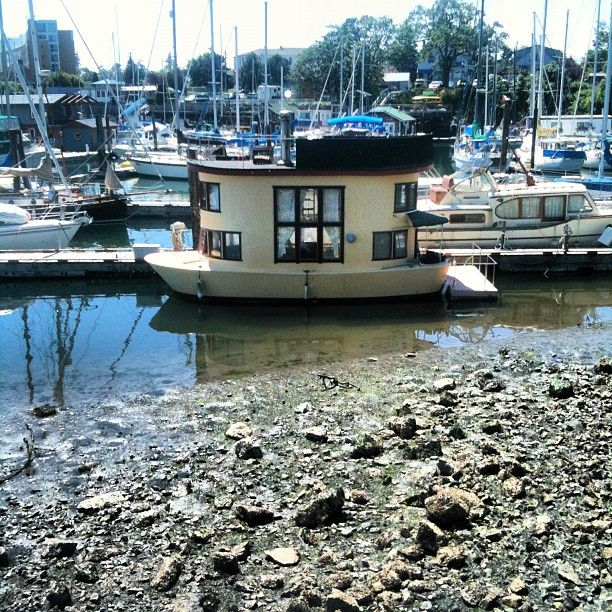 Photo by snarkysteff • Instagram Tiny Lil' Houseboat! | Tiny Houses