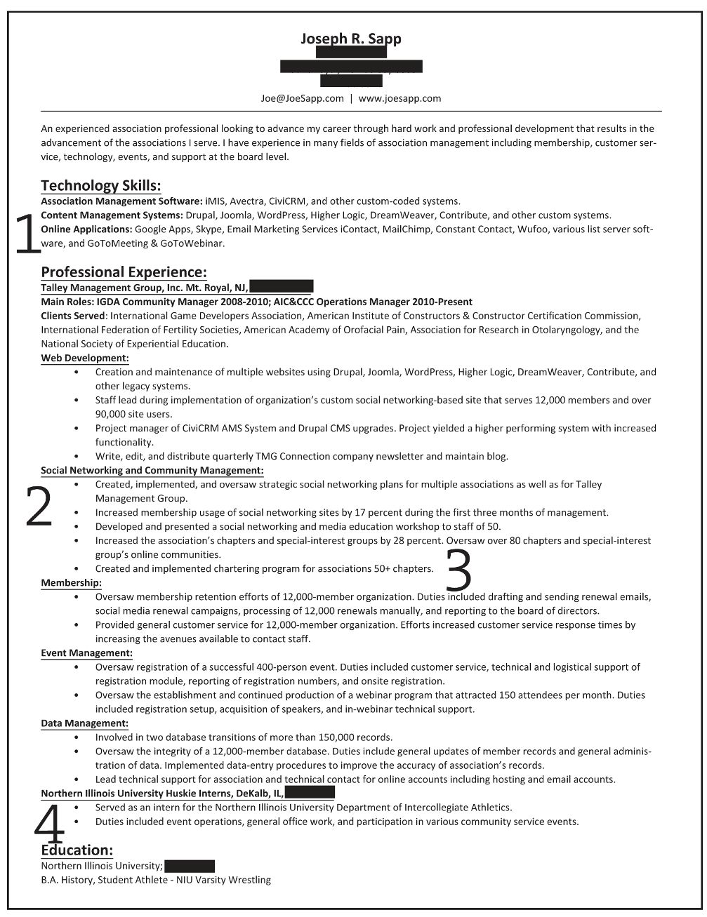 Resume Setup Example Resume Summary Resumes Example Professional Sample Business