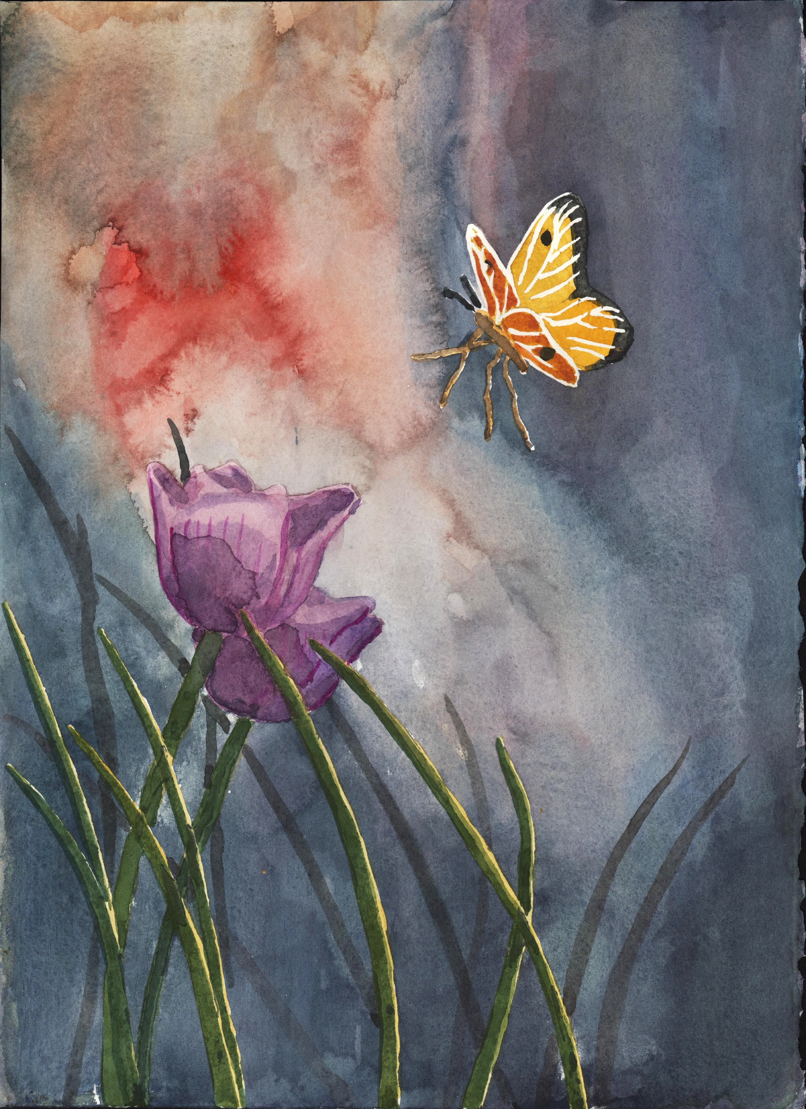water color by mitch delorey