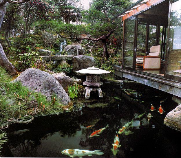 The Koi Whisperer Sanctuary & Japanese Gardens