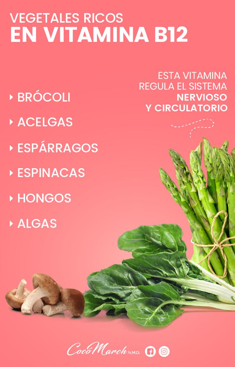 alimentos ricos en b12 vegetales