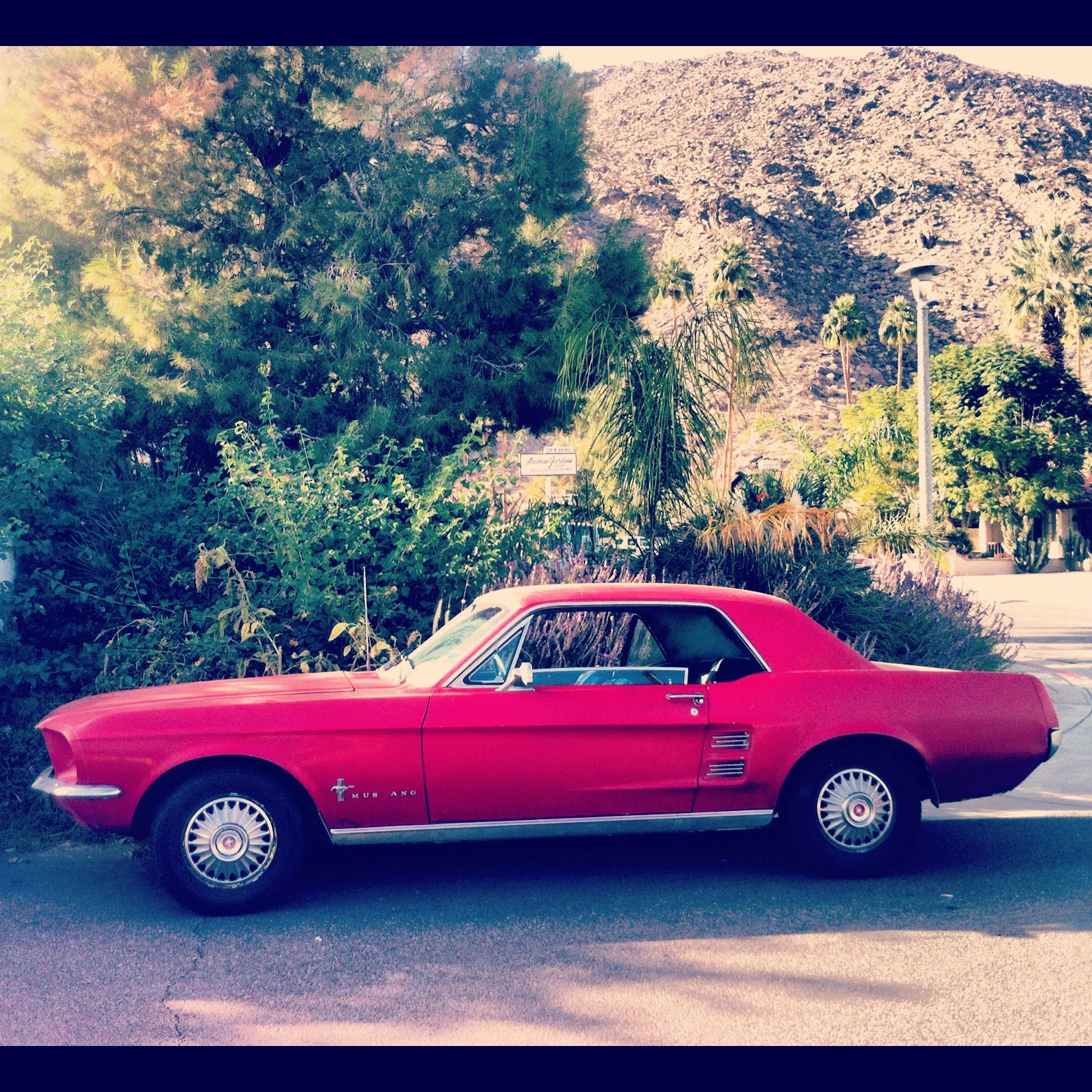 Cars In Palm Springs