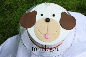 Детский торт собака   Торты для собак, Торты на детский ...