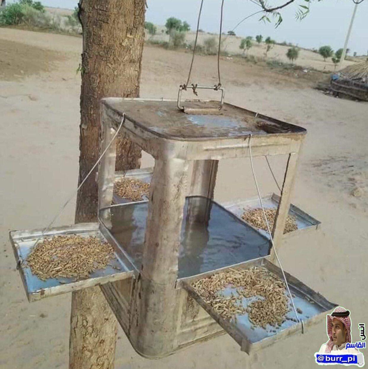 في هذا الطقس الحار اللاهب ستبحث الطيور عن ماء يروي ظمأها فاحرص على فعل الخير مهما استصغرته فلا تدري أي حسنة ت Woodworking Projects Bird Feeders Woodworking