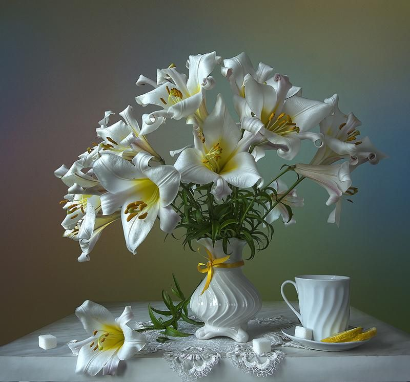 задолго фото натюрморты с белыми цветами видели