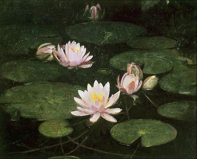Abbott Handerson Thayer: Waterlilies 1884