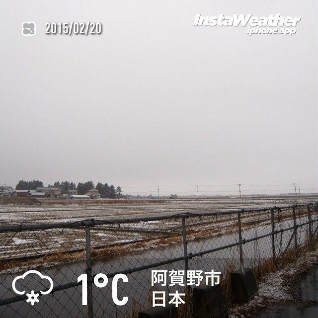 「おはようございます! 雪は雨に変わってきました~(汗」