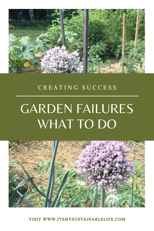 Photo of Garden Failures – What To Do