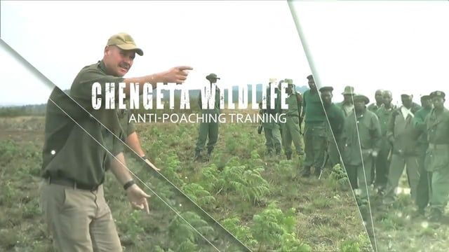 This video briefly outlines what we do in a typical advanced anti-poaching ranger training session. We teach government hired park rangers the best way to safely arrest poachers. Most of this video footage was shot in Malawi.