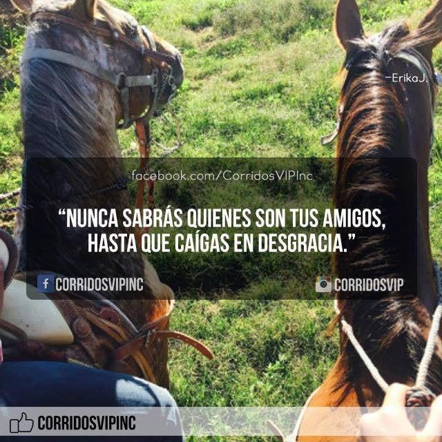 Solo hasta ese momento.!   ____________________ #teamcorridosvip #corridosvip #corridosybanda #corridos #quotes #regionalmexicano #frasesvip #promotion #promo #corridosgram